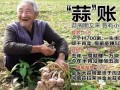 """起底""""蒜你狠"""":蒜农惜售 金乡700亩鲜蒜一头都没卖"""