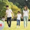 维生素B6,维生素C钠的用途